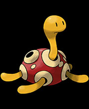Shuckle (0213)